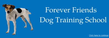 Forever Friends dog training school