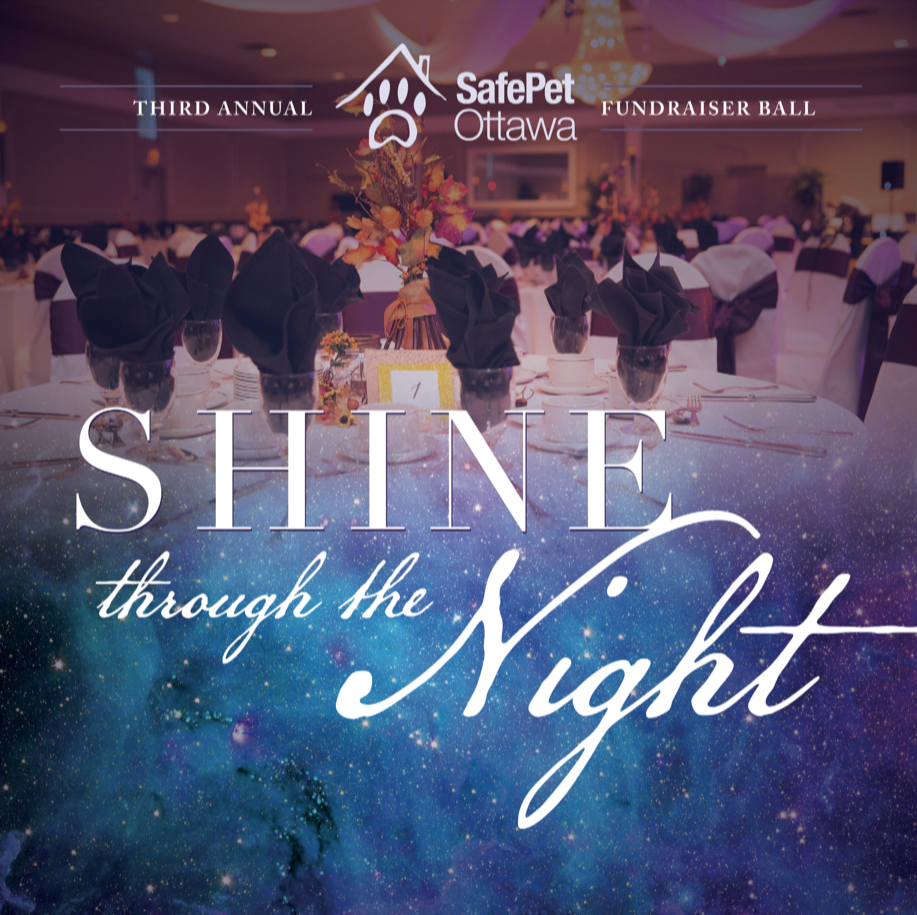 Shine through the night SafePet Ottawa ball 2018